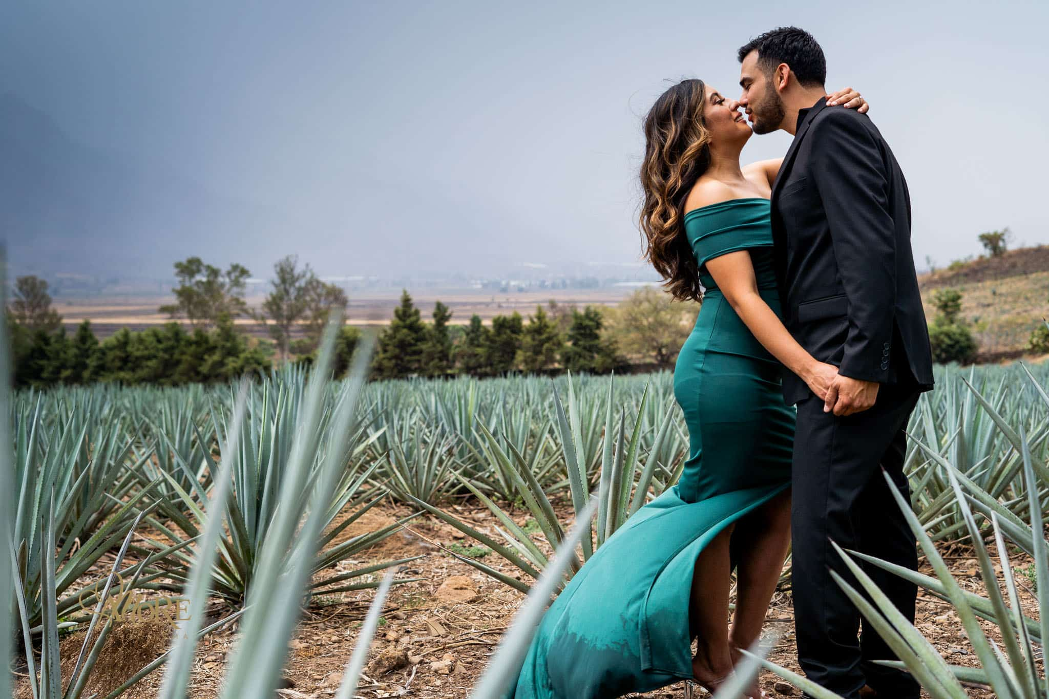 Fotos de boda en Tequila Jalisco Mexico